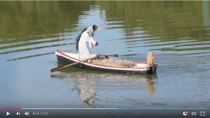 Donk and Monk Go Rowing (2)
