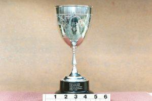 Merlin Cup