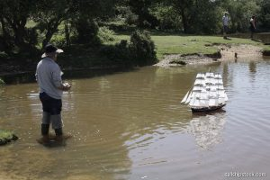 Setley Pond 03 Jun 2018 BLW 031 ©tallshipstock resize