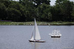 Setley Pond 03 Jun 2018 BLW 223 ©tallshipstock resize
