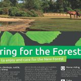 caring for the forest thumb