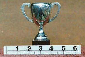 Unnamed Trophy