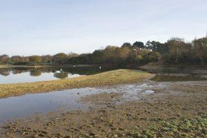 Dry past the island (November 2011)