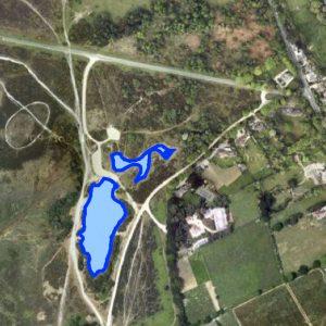 Setley Pond 2016