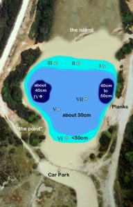 pond_survey_diag_drought