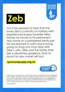 zeb last 002