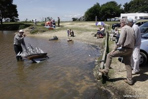 Setley Pond 03 Jun 2018 BLW 159 ©tallshipstock resize