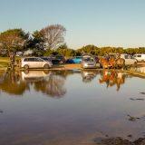 Tide's in at Setley Pond!